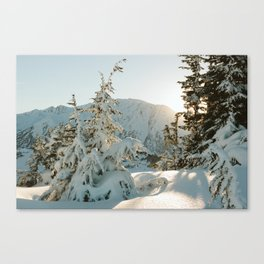 Snow covered trees in Alaska Canvas Print