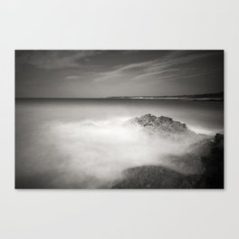 Mucky Waters Canvas Print