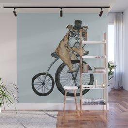 English Bulldog Riding a Penny-farthing Wall Mural