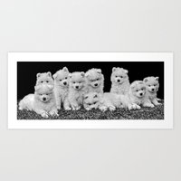 puppies Art Prints featuring Samoyed Puppies by Sharon J