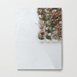Wall Plants Metal Print