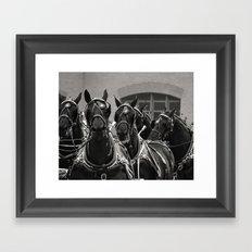 Percheron Horse Team, 2008 Framed Art Print