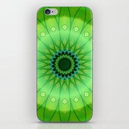 Mandala foretaste of spring iPhone Skin