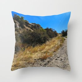 Dust and Dirt Throw Pillow