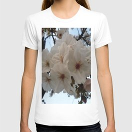 flower and light  - Cherry tree 1 T-shirt