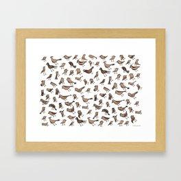 Grey birds Framed Art Print