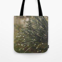 9.13.17 - #2 Tote Bag