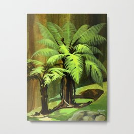 Tree Ferns Darwin Metal Print