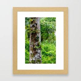 Plants on Trunk Framed Art Print