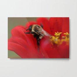 Bumblebee Heaven Metal Print