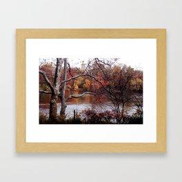 Fall in Central Park Framed Art Print