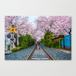 Walking under the blossoms Canvas Print