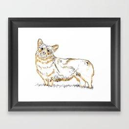 Corgi!!!! Framed Art Print