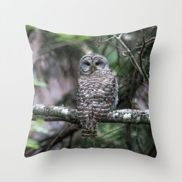 Barred Owl in Forest Throw Pillow