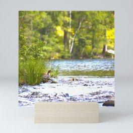 By The Lake - summer scene Mini Art Print