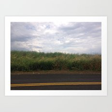 Sauvie Island Art Print