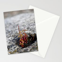 Life in the Gaps 1: Arholma Stationery Cards