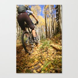 Color Sunday Canvas Print