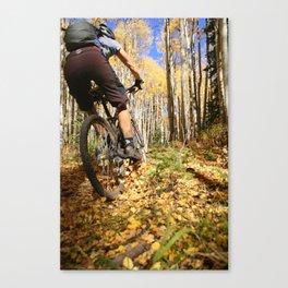 Color Sunday Canvas Print