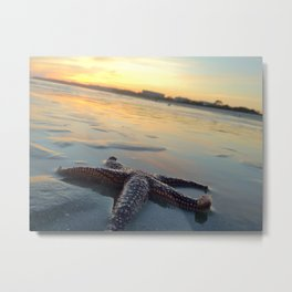 Starfish on the Beach Metal Print