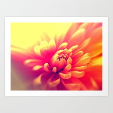 Hot Summer Floral Art Print