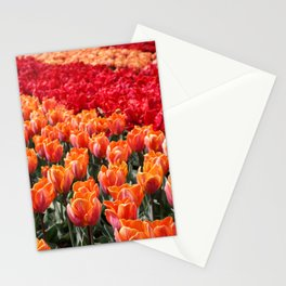 Spring Moment Stationery Cards