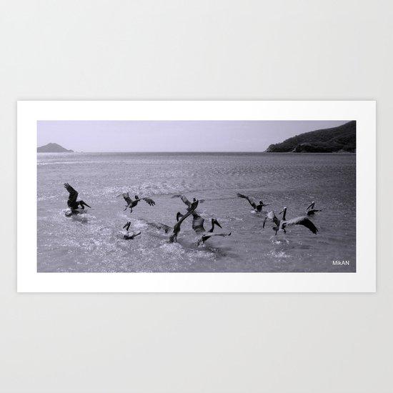 Birds in Santa Marta Art Print