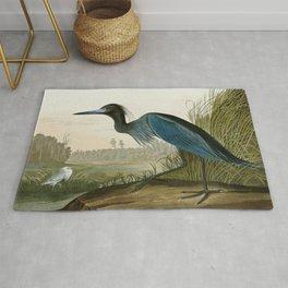 Little Blue Heron - John James Audubon's Birds of America Print Rug