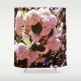 Pink Snowballs Shower Curtain