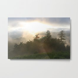 Morning in the Black forest Metal Print