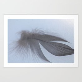 Quill in Snow Art Print