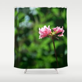 Blossoms One Shower Curtain