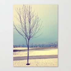 Okanagan Winter Blues Canvas Print