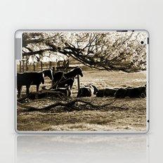 Early Still Laptop & iPad Skin