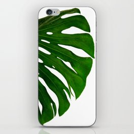 Banana Leaf (Color) iPhone Skin