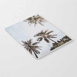 palm trees xiv / chiang mai, thailand Notebook