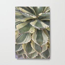 Agave in Yellow & Green Metal Print