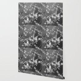 Stillness Wallpaper