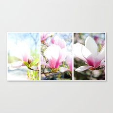 blossom triptych Canvas Print