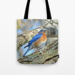 Bluebird in Tree Tote Bag