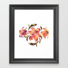 Lilium 02 Framed Art Print