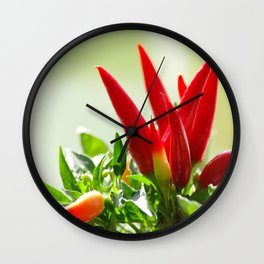 #fresh #Chili #peppers on the #vine for #kitchen #home #decoration Wall Clock