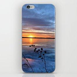 Late Autumn Sun iPhone Skin