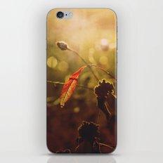Beauty begins iPhone & iPod Skin