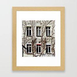Wall of Ivy Framed Art Print