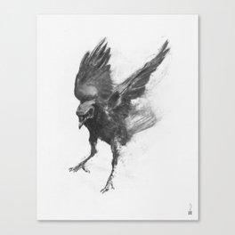 Common Crow [2] Canvas Print