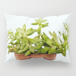 The Unidentified Houseplant Pillow Sham