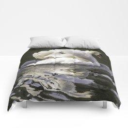 Shy Swan Comforters