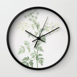 Vintage Hemlock Flowers Illustration Wall Clock