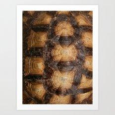Shell Game Art Print